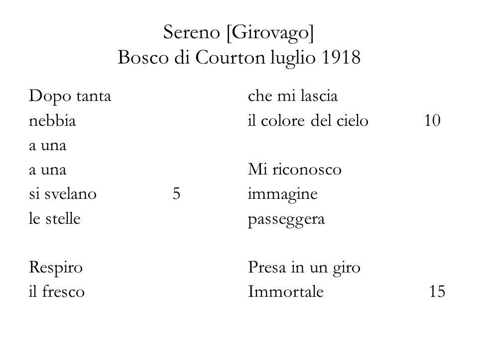 Sereno [Girovago] Bosco di Courton luglio 1918